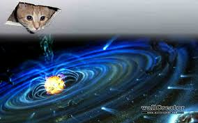 cat universe wallpaper almighty ceiling cat 1440 900 wallpaper