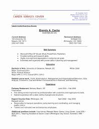 forms of resume living social resume sample resume for social worker converza co
