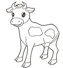 baby cow coloring page drawing pinterest baby cows cow and
