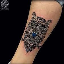 15 best small owl tattoos images on owl design