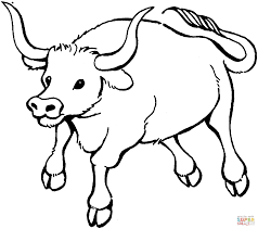 bull 7 coloring page free printable coloring pages