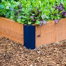 first time veggie garden u2014where to start you bet your garden