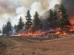 Wildfire Bc Clinton by Live Blog Mass Wildfire Crew Bc Canada Deployment Fireground360