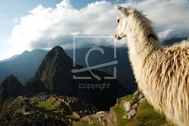 ck images com travel people nature travel stock photography