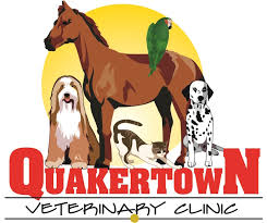 veterinary clinic quakertown pa dog cat horse exotic pet