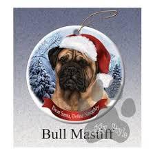 bullmastiff puppy o my gosh my looks like this but