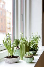 12 creative indoor garden ideas for your home decor garden mandy beautiful indoor garden ideas