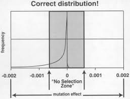 vetting evolution mutation and natural selection