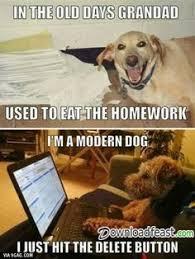 Best Animal Memes - top best animal funny memes downloadfeast