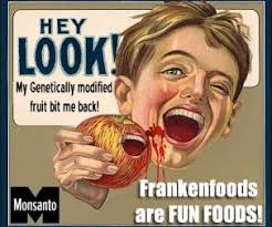 Organic Food Meme - the legend of the a ole gmo aole gmo means aole aloha