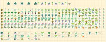 Companion Garden Layout The Dusty A Garden Planner