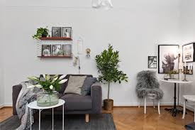 3 loveliest apartments for real plant lovers botanical deer