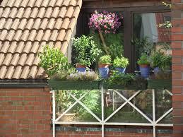 flieder balkon foto mein garten im forum lüdinghausen klaus ahrens news