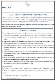 Resume Format Sales And Marketing Over 10000 Cv And Resume Samples With Free Download Graudate