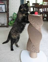 Cat Scratch Lounge How To Stop Your Cat From Scratching Your Furniture And Carpets