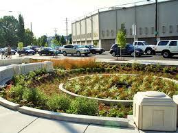 Urban Gardens San Francisco - bioretention rain gardens sf better streets community garden