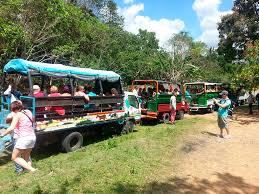 safari jeep jeep safari truck adventure best dominican t u0026t