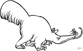 anteater coloring page www bloomscenter com