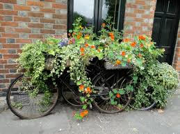 Container Flower Gardening Ideas Container Flower Garden Ideas Photograph Ideas Container G
