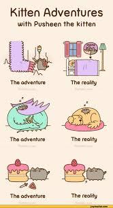 Pusheen Cat Meme - fresh 27 pusheen cat meme wallpaper site wallpaper site