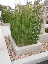 Concrete Planters 32 Best Concrete Planters Images On Pinterest Concrete Planters