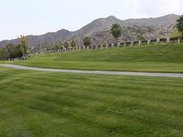 desert slowly ditches grass goes brown on landscaping