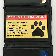 pet care cards for pets the pet care card