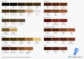 shades medium brown hair color chart medium hair styles ideas