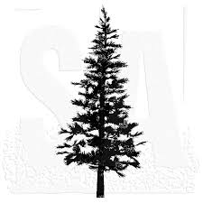 tim holtz wood mounted st pine tree p2 1258