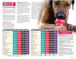 kong pet toy user guide the handy dog u0026 cat toy guide from kong