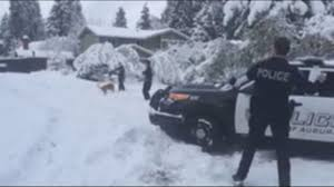 Auburn California Wildfire by Auburn Officer Fends Off Snowball Attack King5 Com