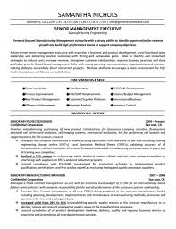 resume for engineers free resume templates professional profile template example of a