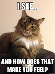 Therapist Meme - i see and how does that make you feel therapist cat quickmeme