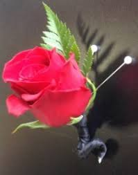 Red Rose Boutonniere Boutonnieres Bloomshop San Antonio Tx