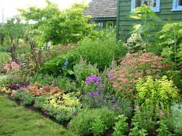Small Garden Border Ideas Collection Ideas For Small Garden Borders Photos Best Image