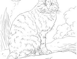 warrior cats coloring pages sad warrior cats coloring pages sad by hunter cat mates jungle sits page