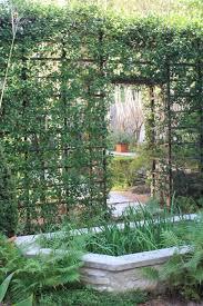 garden astonishing image of garden decoration using dark brown