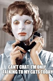 Funny Cat Lady Memes - psychopath cat lady can t chat i m only talking to my cats
