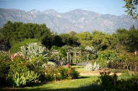 descanso gardens wedding descanso gardens wedding minister officiant