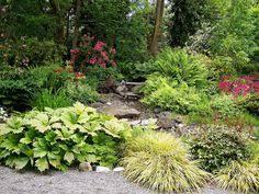 Washington State Botanical Gardens Soos Creek Botanical Garden Soos Creek Botanical Garden