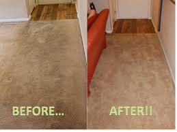 rug doctor upholstery cleaner review rug doctor review after two cleanings for our fans pinterest