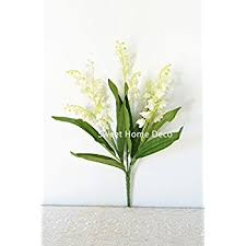 Lily Of The Valley Flower Amazon Com 10