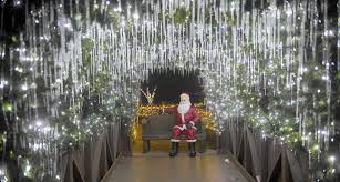 Zoo Light Chicago by Lehigh Valley Zoo U0027s Winter Light Spectacular Shines Brighter In