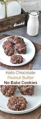 309 best low carb chocolate recipes images on pinterest