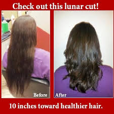 best days to cut hair for growth best 25 hair chart ideas on pinterest brown hair colour chart