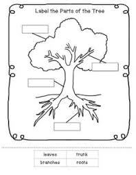 leaf with veins worksheet from twistynoodle com tremendous trees