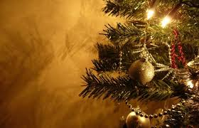 Christmas Decorations Online Cape Town by Christmas In July At De Hoop U2013 2oceansvibe Radio Online