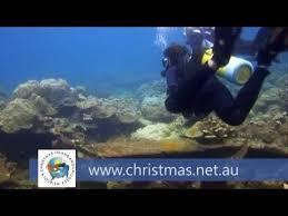 39 best isla de navidad comunidad fotográfica christmas island