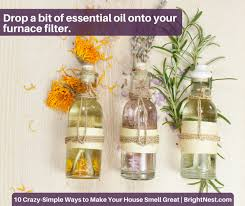 make your home brightnest 10 crazy simple ways to make your house smell great