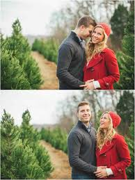 christmas tree farm photo ideas cheminee website